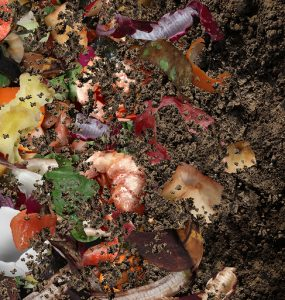 The advantages and disadvantages of COMPOSTING