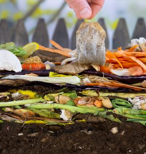 200 things you can compost in and around the home