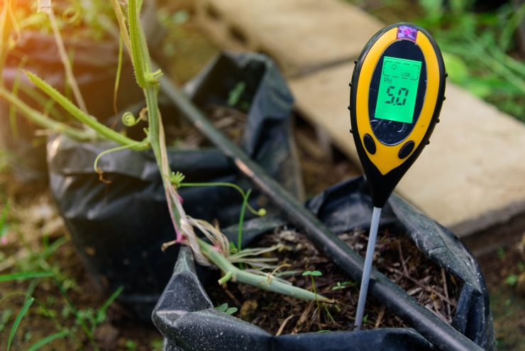 How to test your soil pH?