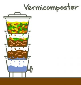 What is the difference between Vermicompost and Compost